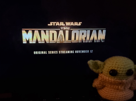 "The Mandalorian Review - ""This is the Way"""