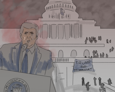 Storming of the Capitol artwork (featured image) by Ty Kalestiantz